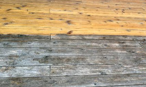 Decking Cleaning Wood Green